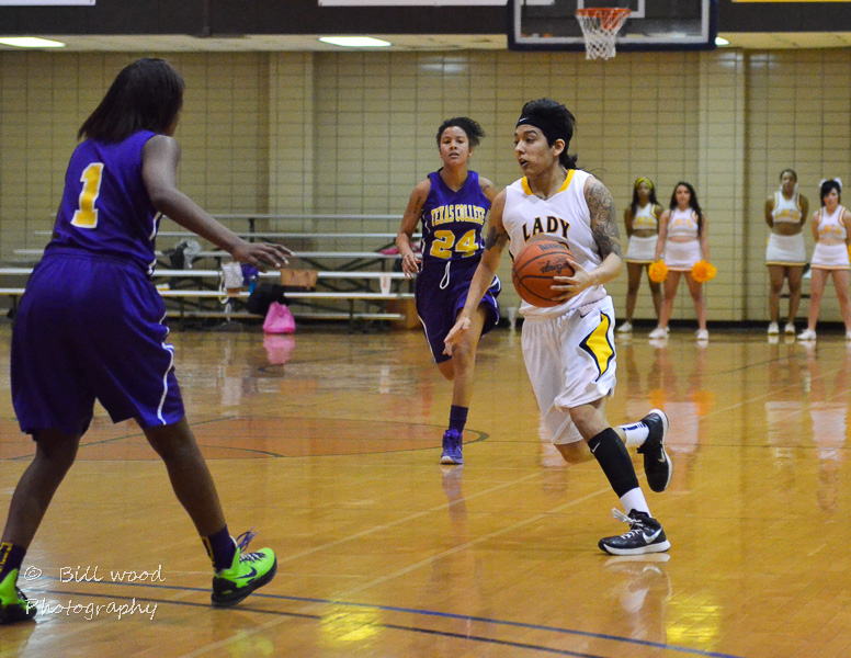 19th LSUS Lady Pilots vs Texas College Photo