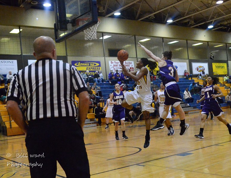 16th LSUS Lady Pilots vs LSUA RRAC 1st Round Playoff Photo