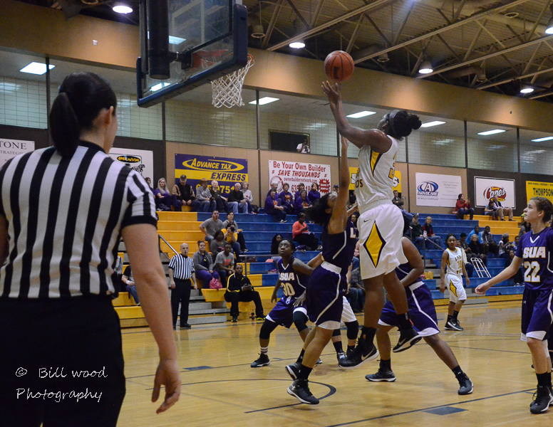 22nd LSUS Lady Pilots vs LSUA RRAC 1st Round Playoff Photo