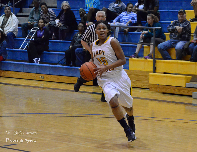 34th LSUS Lady Pilots vs LSUA RRAC 1st Round Playoff Photo