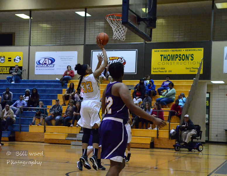 36th LSUS Lady Pilots vs LSUA RRAC 1st Round Playoff Photo
