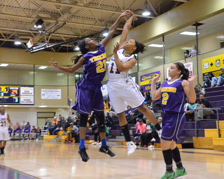 6th LSUS Women's Basketball vs Paul Quinn Photo