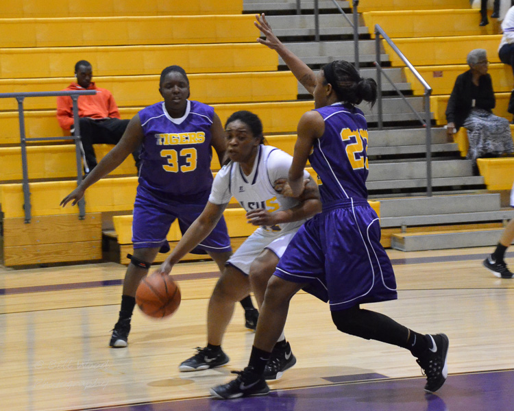 15th LSUS Women's Basketball vs Paul Quinn Photo