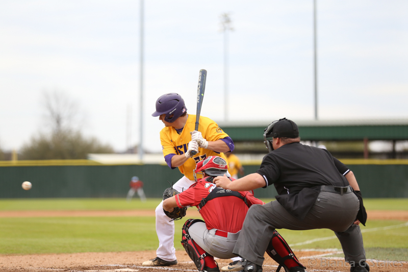 22nd LSUS Pilots vs Houston-Victoria Game 2 & 3 Photo
